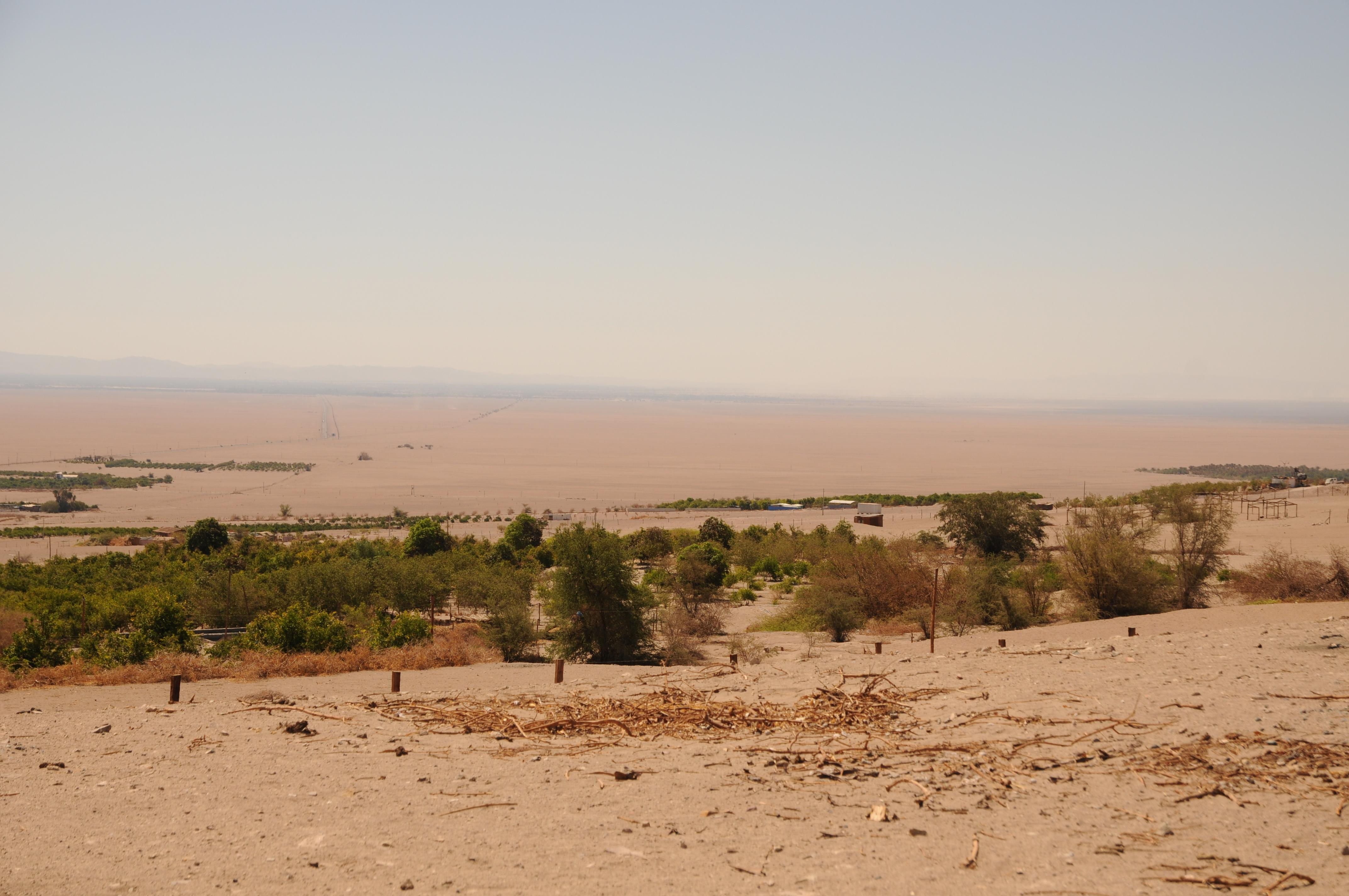Diario di viaggio 2: Pica, l'oasi nel deserto (Cile)