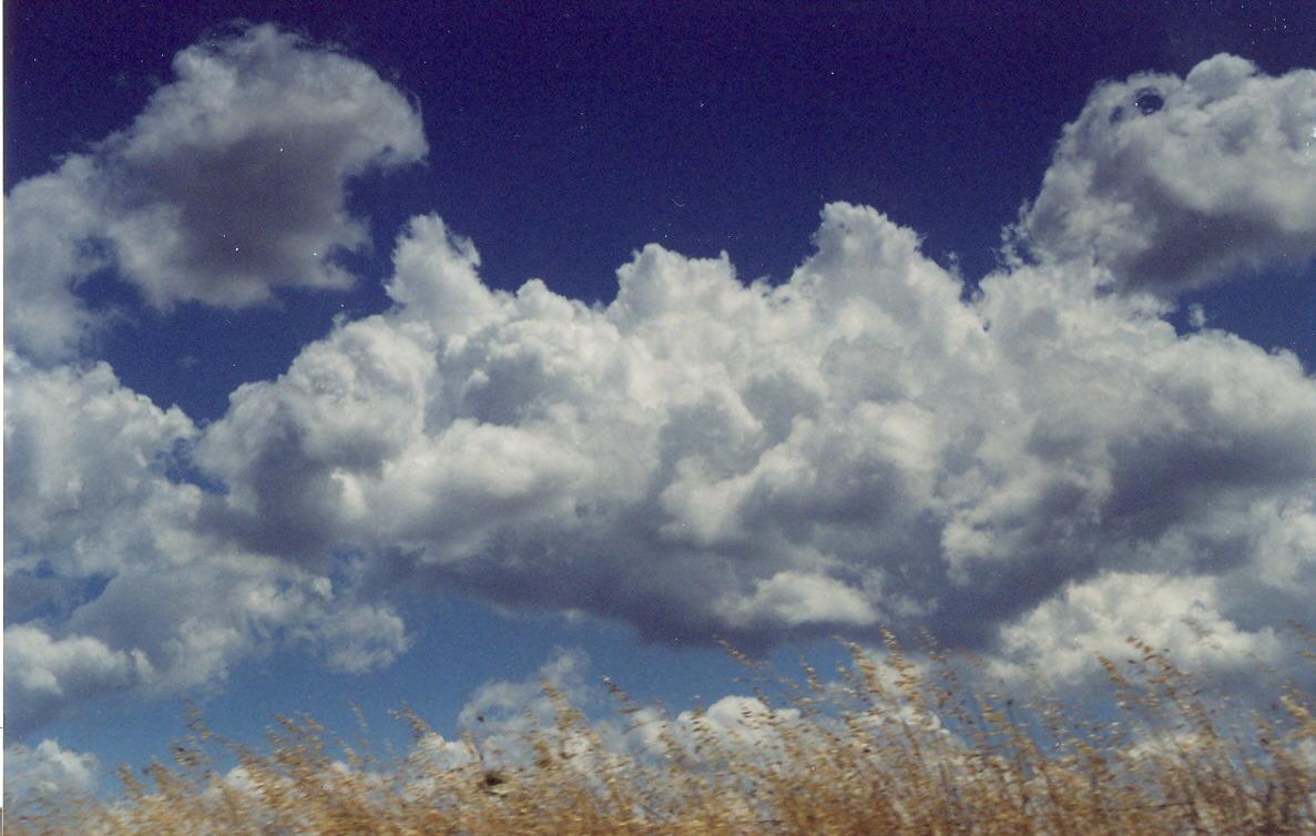 Nuvole - Dipinto di Giulio Concu