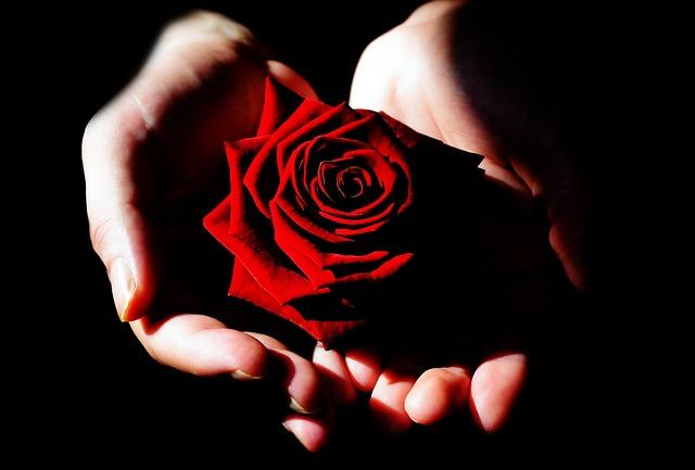 La Rosa di Rilke